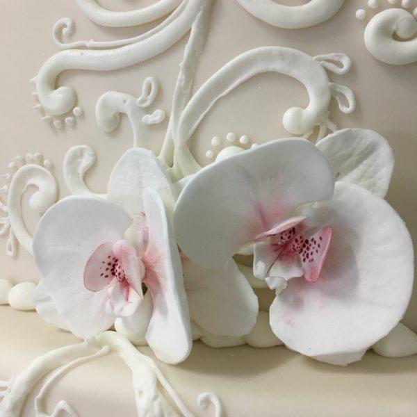 orchidea-04